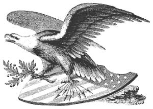 Eagle n American Flag